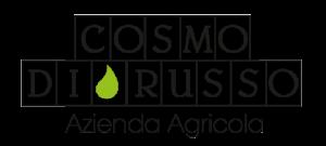 logo_cosmo_di_russo