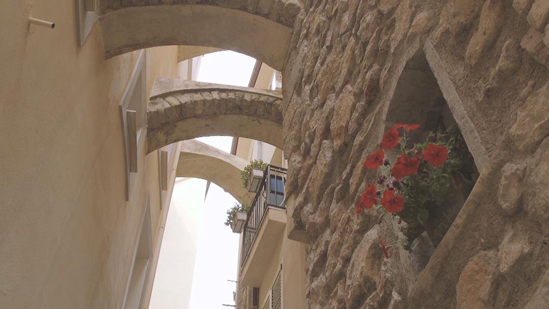 gaeta-centro-storico-territorio-produzione-olive